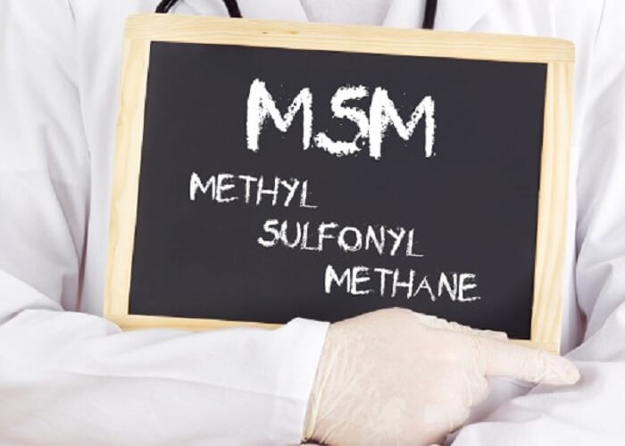 Nutritional Outlook: MSM Sulfur Compound Aids Metabolic Reactions in New Animal Study